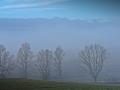 2021-01-02-Nebelmorgen-121-RZL