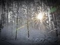 2021-01-25-Winterwunderland-038-RZL