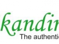 Der Skandinavier Logo 2