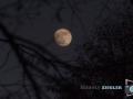 Der Mond ist aufgegangen ......