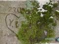 EREMITAGE - ALTE LIEBE 005-RZL