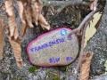 2020-11-25-FrankenStones-062-RZL