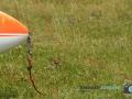 Segelfliegen - Sonntag 153-RZL